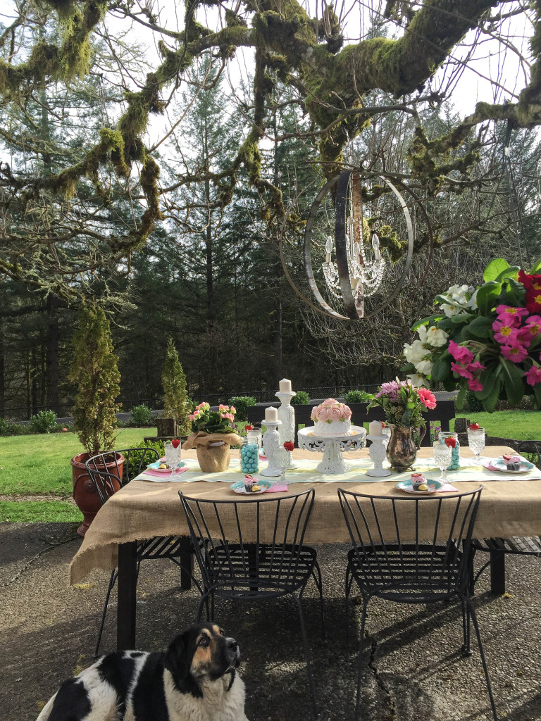 Creative outdoor dining easter brunch ideas hallstrom home for Outdoor brunch decorating ideas