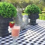 Raspberry Wedding Drink Recipe