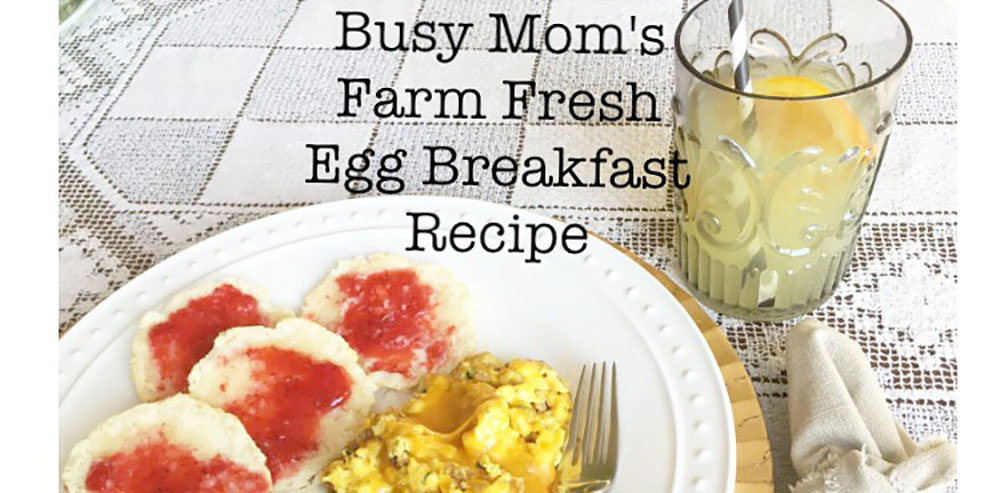 Busy Mom's Farm Fresh Egg Breakfast Recipe