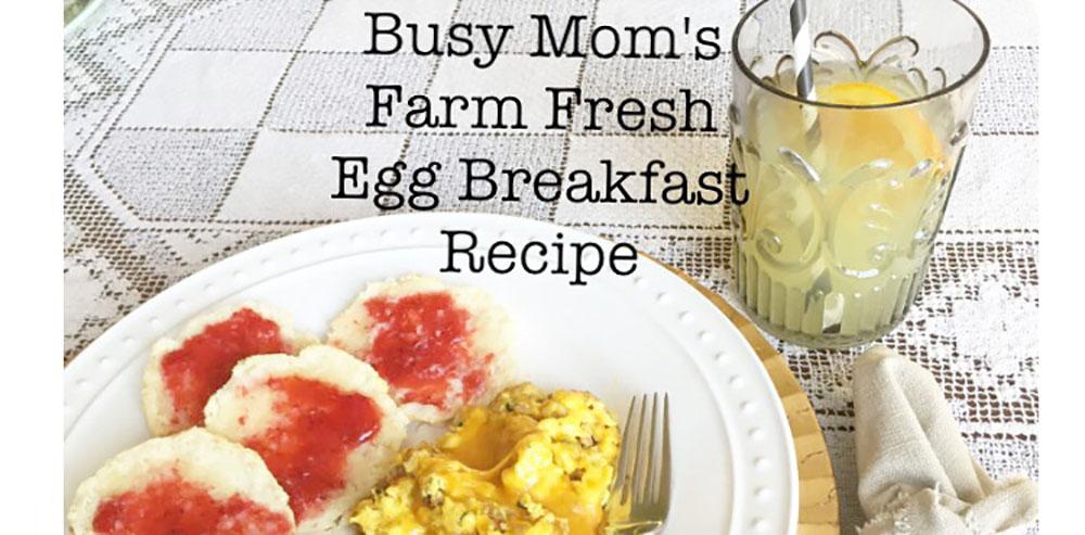 Busy Mom's Farm Fresh Egg Breakfast Recipe Hallstrom Home