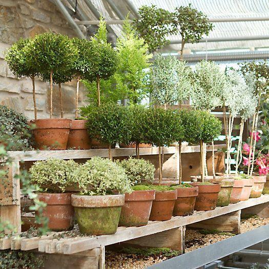 5 Garden Spaces We Love - Hallstrom Home