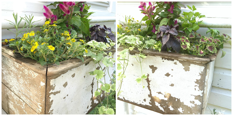 Hallstrom Home Farmhouse Planter Box for Herbs