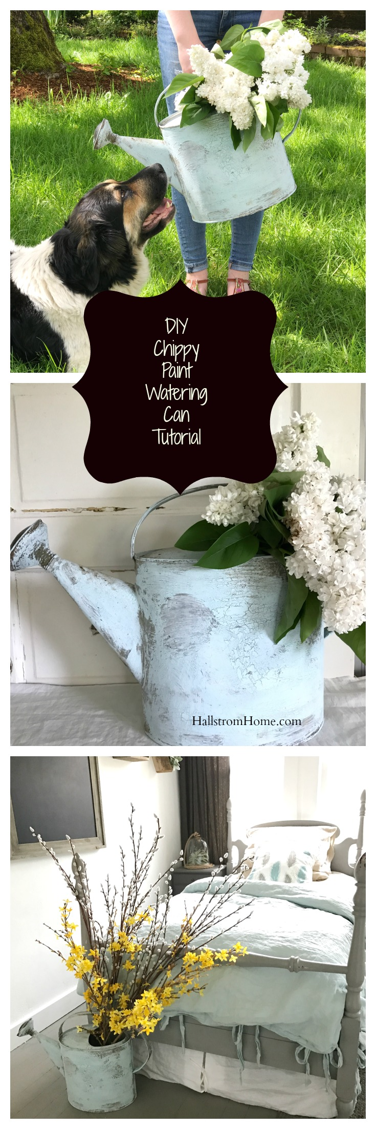 DIY chippy paint watering can tutorial from Hallstromhome. This is our SSMfeatureme for the week. Find this tutorial on how to create an old vinatge worn look to a watering can or other items. Great way to create a farmhouse feel (aka Fixer Upper style - Magnolia Market). You can see how to DIY this at home from a thrift store find or something you have lying around the house.