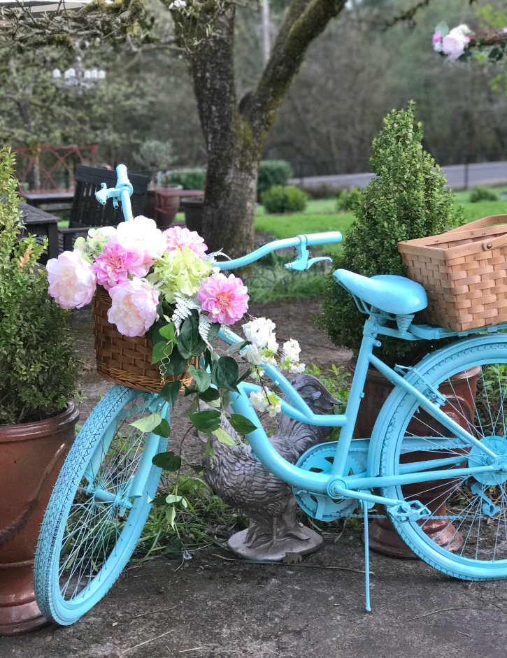 The Girl Who Painted Her Bike Blue