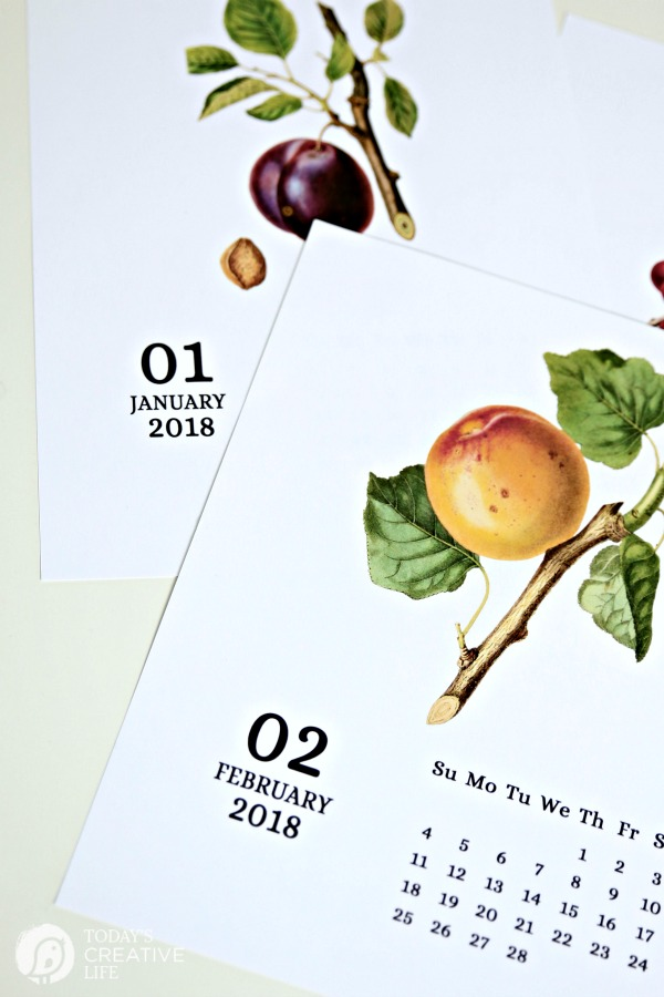 january and february calendar with vintage fruit printed on