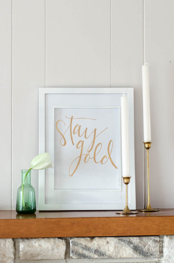 stay gold in scroll framed in white frame