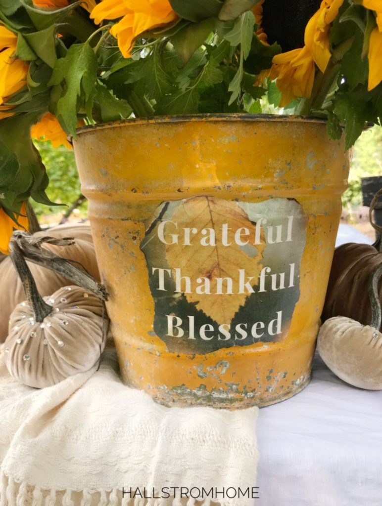 yellow bucket with grateful thankful blessed printable on it with sunflowers in it and velvet pumpkins on the side