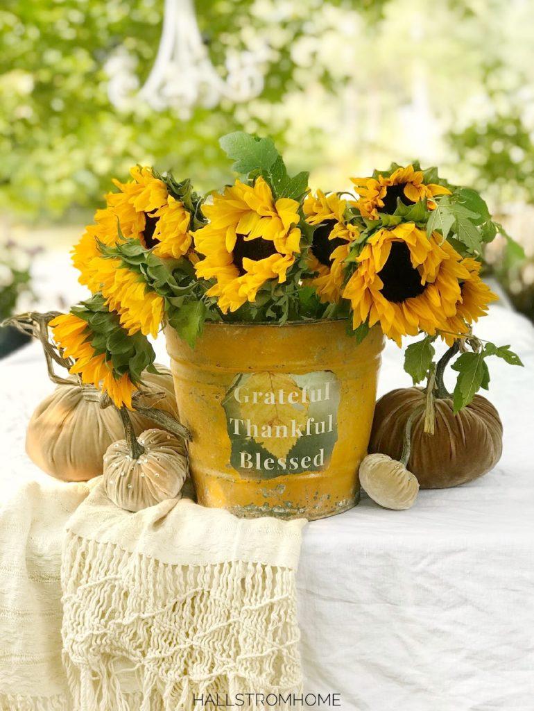 yellow bucket with bouquet of sunflowers and 4 velvet pumpkins against bucket, with tassel blanket