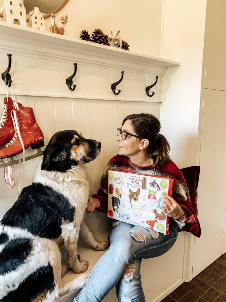 Daisy's Favorite Doggy Advent Calendar for Christmas/Review #dogadventcalendar#traderjoesadventcalendar#adventcalendar#dogtreatadventcalendar#christmasdecor#dogchristmas#christmasfordogs#advent#dogadventcalendartraderjoes#christmastimedecor#farmhousechristmas#dogtreatadventcalendarreview#adventreview#hallstromhome