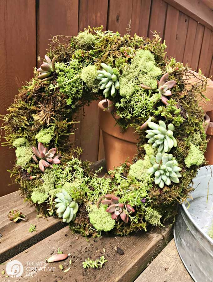 DIY Faux Succulent Wreath|succulent wreath|how to make a succulent wreath|how to make a faux succulent wreath|spring wreath|spring diy|mothers day wreath|wreath making|candle wreath|wall hanging wreath|target dollar spot craft|dollar store crafts|spring tablescape|farmhouse table|table setting|Hallstrom Home