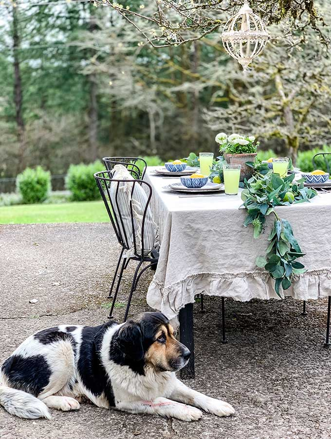 Spring Outdoor Table Ideas|Casual outdoor table|Spring tablescape|outdoor party|party planning|farmhouse|farmhouse dining|patio dining|Spring outdoor decorations|summer decorations|Outdoor table centerpieces|outdoor table decorating ideas|dinner party|shabby chic|farmhouse style|how to style|how to style outdoor table|hallstrom home