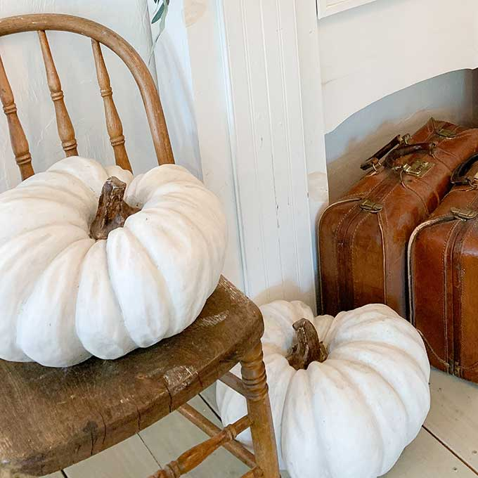 Fall Mantel Decor with Chalk Painted Pumpkins |simple mantel|simple fall mantel|cozy home|hygge home|easy diy|fall diy|fall crafts|gold leaf mirror|chalk paint craft|chalk paint diy|fall mantel decor|Fall home decor|fall farmhouse|farmhouse style|diy fall pumpkins|chalk painting pumpkins|painting pumpkins diy|neutral fall mantel |shabby chic mantel|Hallstrom Home
