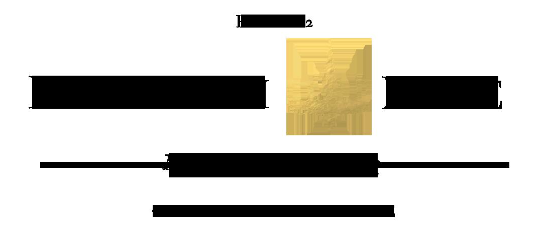 Hallstrom Home logo