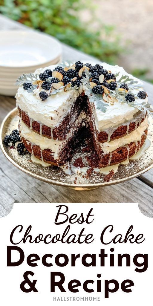 Best Chocolate Cake Decorating And Recipe / Recipe For Chocolate Cake / Homemade Chocolate Cake / Easy Cake From Scratch / Moist Box Cake Recipe / HallstromHome